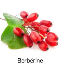 Bebérine